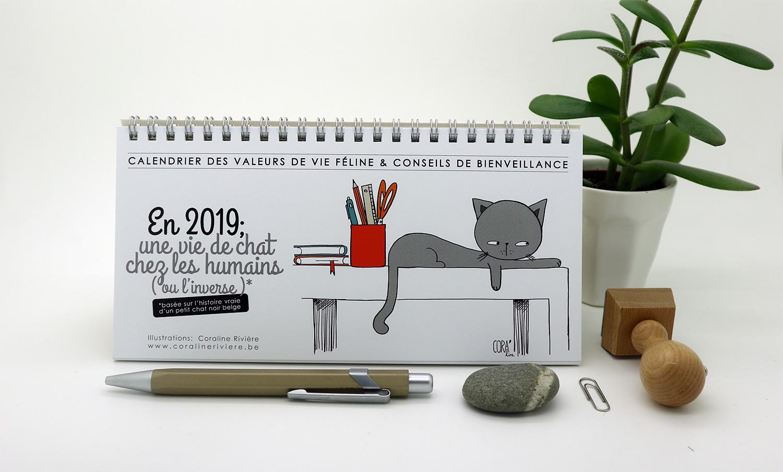 calendrier 2019 humour dessin chat situations cocasses conseils valeurs de vie