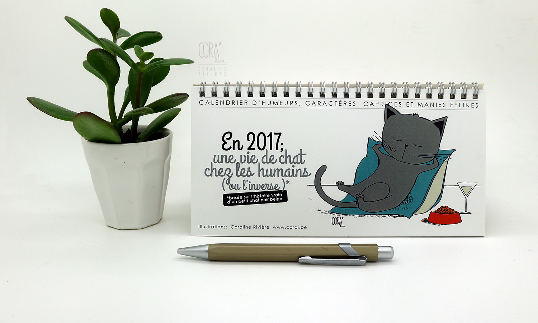 calendrier humoristique scenes de vie avec nos amis les chats1