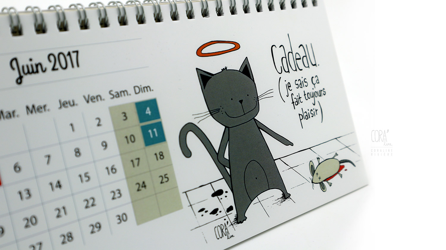 calendrier illustrations chats corali riviere1