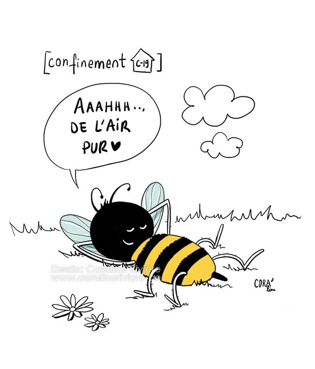 confinement corona covi 19 moins de pollution air pur abeilles nature reprend dessus