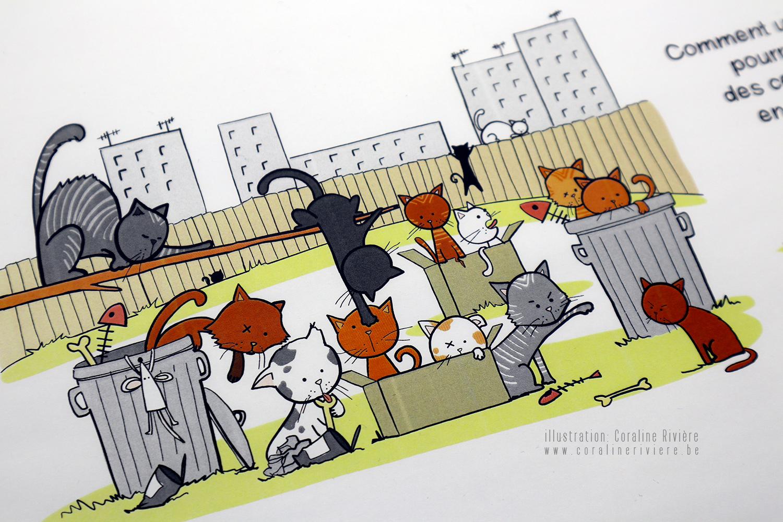dessin chats castration chats errants steriliser chats leur rendre service