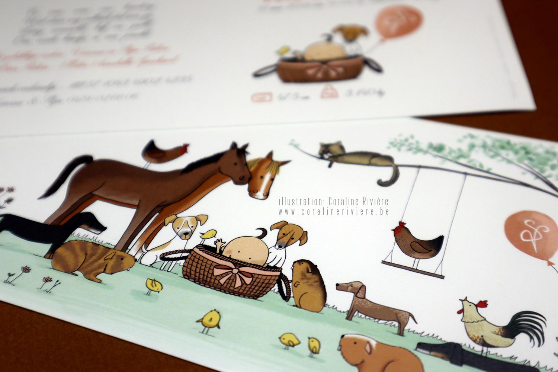 faire part de naissance animaux de la ferme poule chat chien chevaux poussin